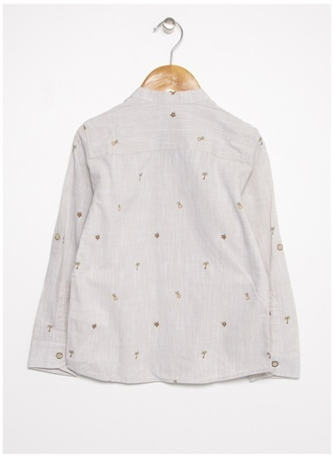 U.S. Polo Assn. Gömlek Taş